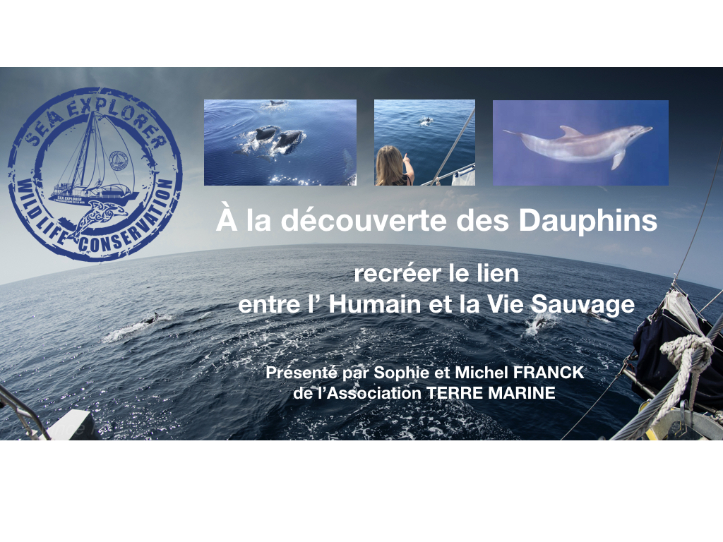 Conférence vie sauvage et dauphins
