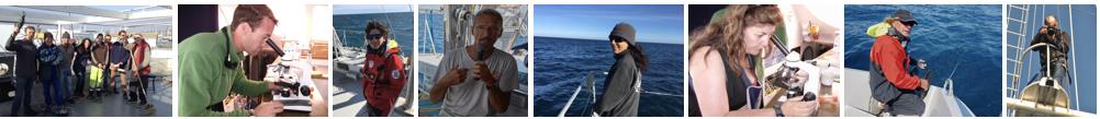Sciences participatives, voyages et sorties en mer participatifs et solidaires