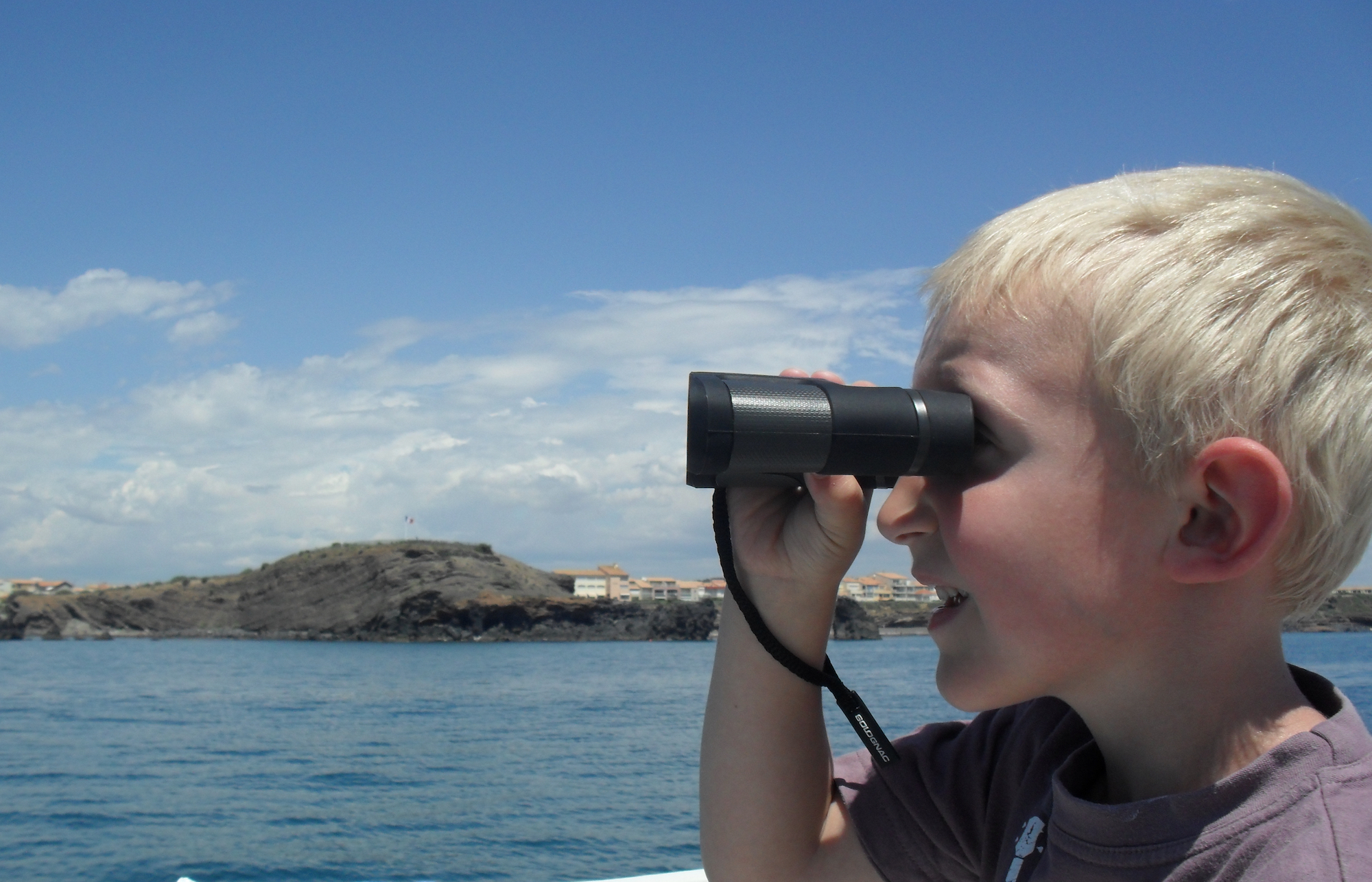 Exploration vie marine en famille - dauphins - navire Sea Explorer Association Terre Marine