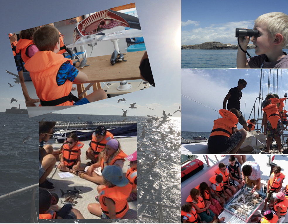 2h exploration en mer en famille cap d'agde - navire Sea Explorer - association Terre Marine