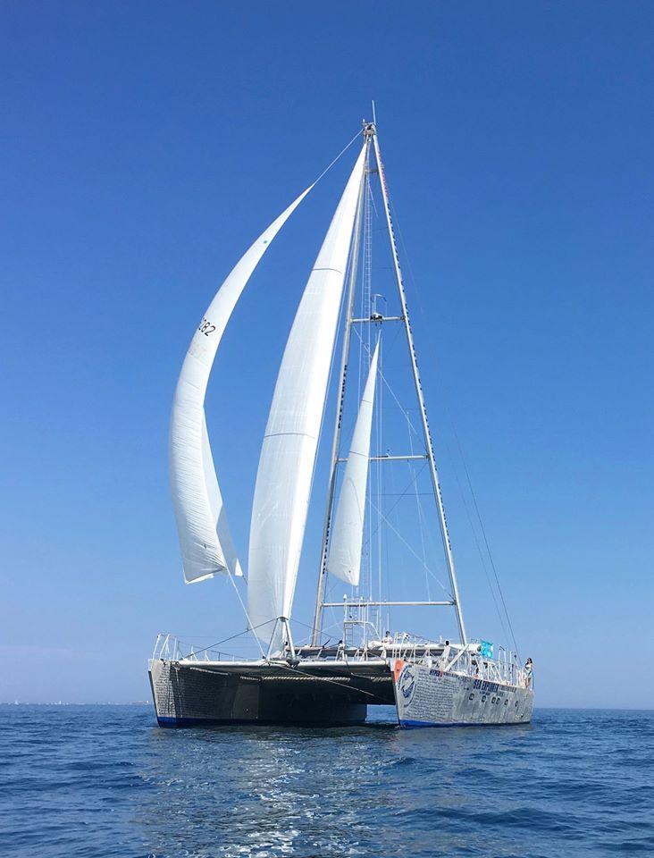 navire Sea Explorer sous voile - observation dauphin cap d'agde