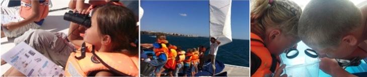ateliers embarqués voile et Vie Marine à bord du Sea Explorer Association TERRE MARINE