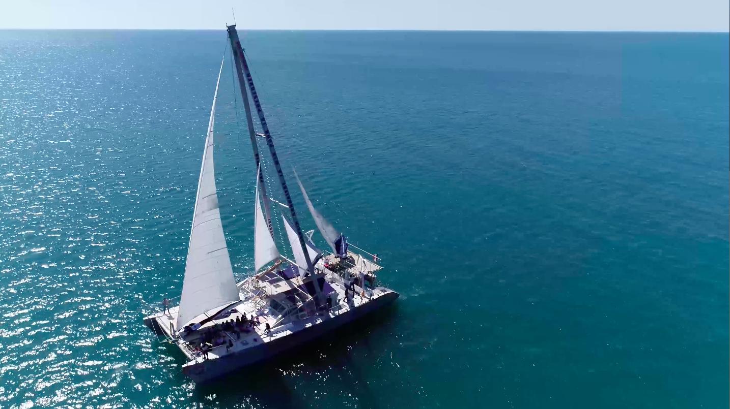 navigation pédagogique - missions scientifiques - dauphins - méditerranée - navire Sea Explorer - association TERRE MARINE
