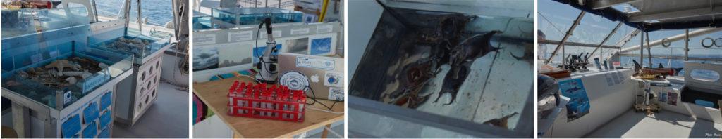 matériel pédagogique à bord du navire Sea Explorer association Terre Marine